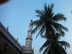 Rickshaw Run 13b - Chennai