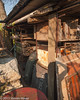 Steven House Photography posted a photo:	Behind the woodpile (and more Morris Minor parts), in the garden, Kent, UK