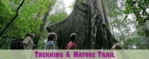 Costa Rica Trekking and Nature Trail