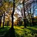 Lyme Park, Cheshire.