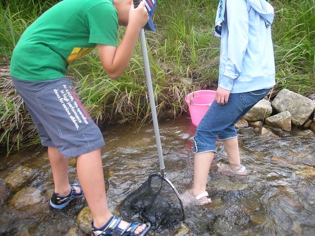 網を立てて,足下に気をつけながら,二人で協力して川下の石を動かして探索中.