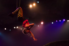 musical theatre(0.0), stage(0.0), concert(0.0), event(1.0), performing arts(1.0), aerialist(1.0), entertainment(1.0), performance(1.0), acrobatics(1.0), circus(1.0), performance art(1.0),