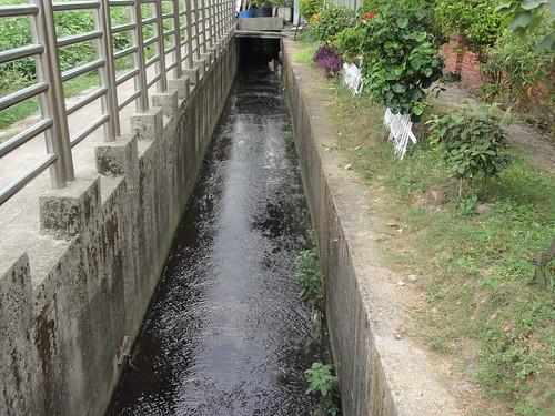 門前小溪如今已變成三面平整的水泥溝