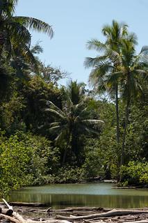 Costa Rica - Corcovado National Park - Sirena Station