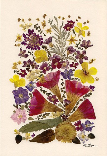 pressed flower print