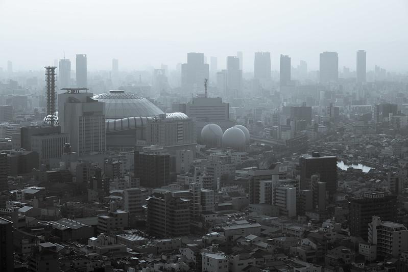 都市metropolis