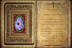 Evangelio según San Lucas 11,37-41. Martes 15 Octubre 2013