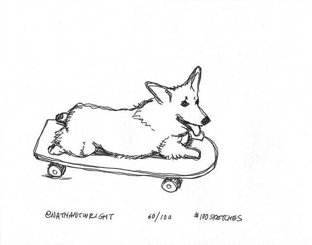 Corgi on a skateboard