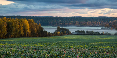 autumn panorama fog latvia