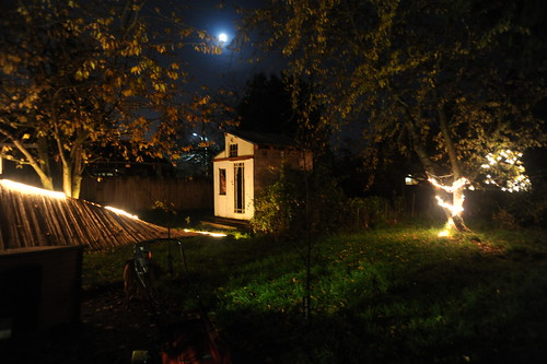 The downed fence, shed, backyard, under the moon, lights, cherry trees, grass, lawnmower, Rosie, Seattle, Washington, USA by Wonderlane