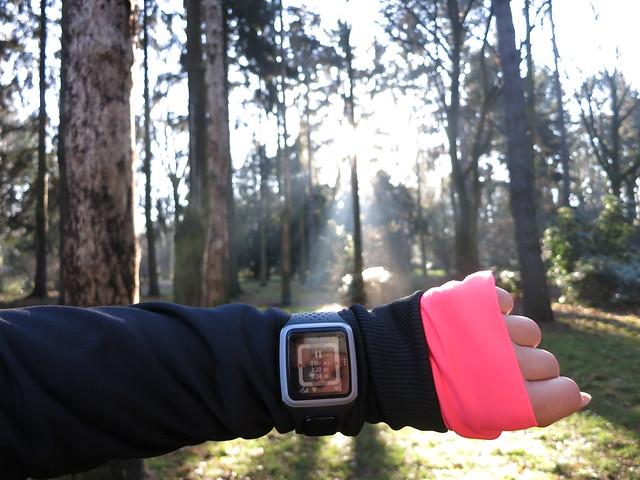 Running Park Szczytnicki