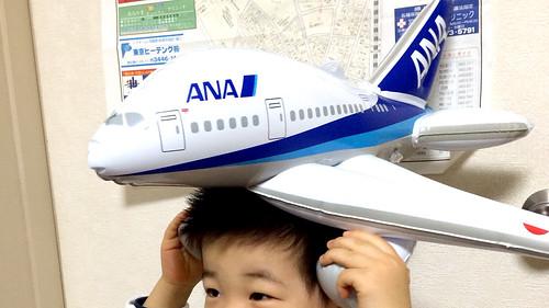 ふうせん飛行機ととらちゃん 2013/12