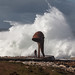 Small photo of Desafiando al temporal