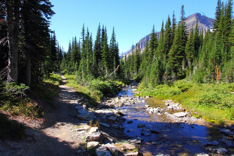IMG_3871 Siyeh Pass Trail