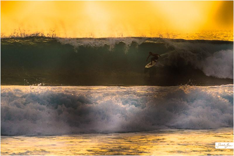 6_Kona_Banyans_Swell_Surf_Dom.jpg