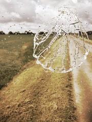 Sur le chemin après la pluie - Photo of Monnerville