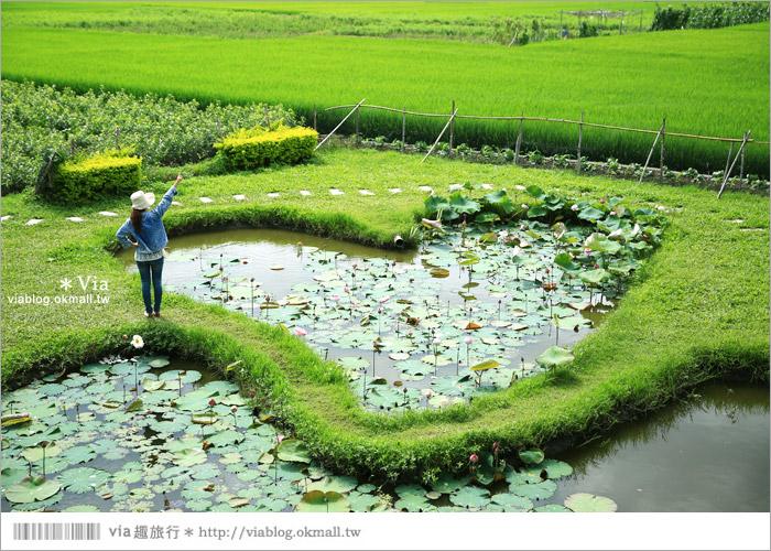 【彰化大村景點】大村雙心池塘/平和夕照平台@浪漫必遊‧約會拍照的好去處~9
