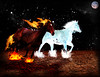 fire_and_ice_horse_by_espadanumberfour-d4sqj6c
