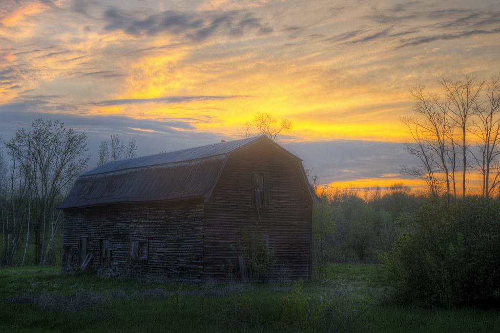 Old Barn, New Summer
