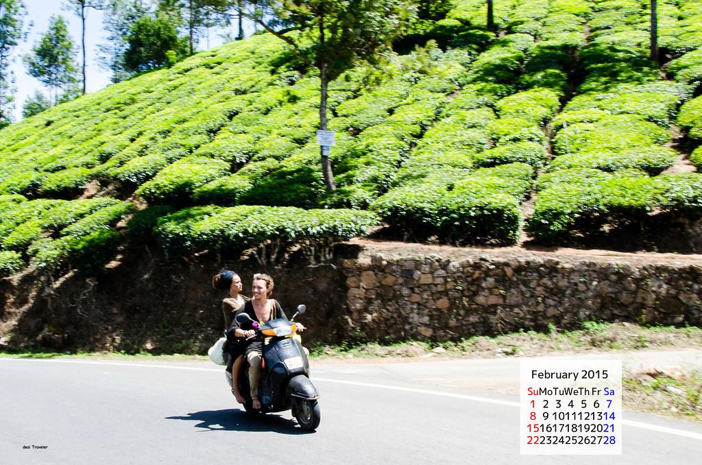 Munnar Tea Gardens Calender