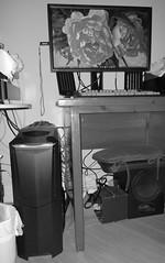 monitor flash (3)