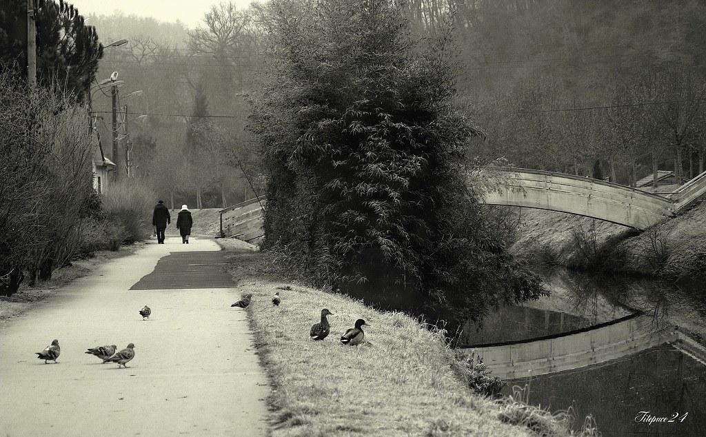 Promenade + correction effacement fils,poteaux etc.... 16372213765_90dfbacf1b_b