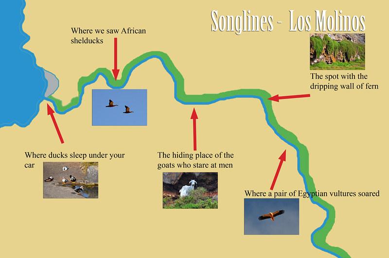 Songlines, Puerto de los Molinos