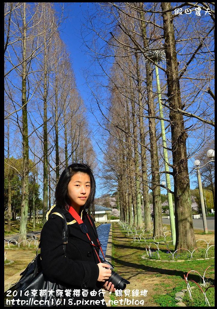 2014京都大阪賞櫻自由行.鶴見綠地DSC_1182