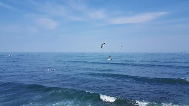 Black Sea - Romania.