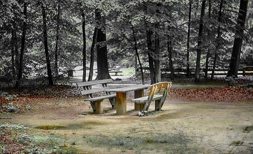 Sitzgruppe Wald