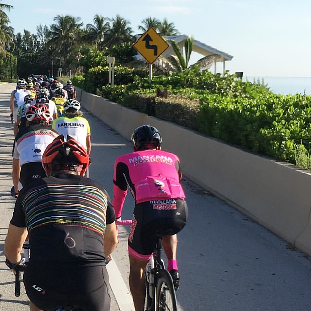 A1A group ride - ocean to the right, fast out and back. #cycling #loves_road_bikes #southfloridacycling