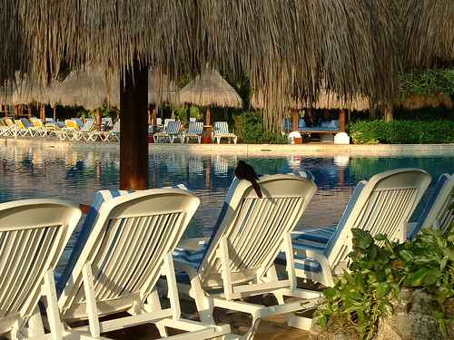 MexicoFEV2005 - 004