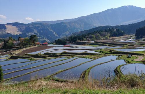 japan 日本 touring 兵庫県 w650 養父市