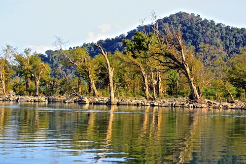 reflections on the Mekong river