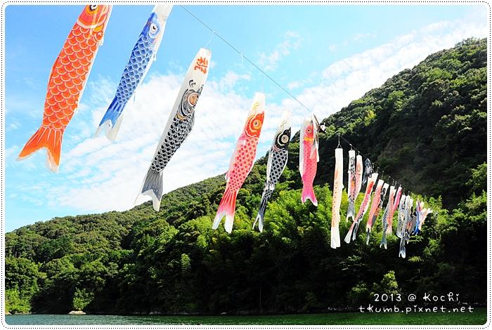四万十大爆騎 (29).jpg