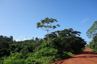 Taxi Oiapoque Macapa, Amapa Brasil