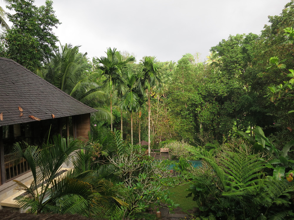 Bali003
