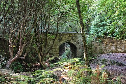 bridge england rural eastsussex folly ashdownforest conservationarea follybridge larigan phamilton