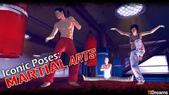 iconic_poses_martialarts_684