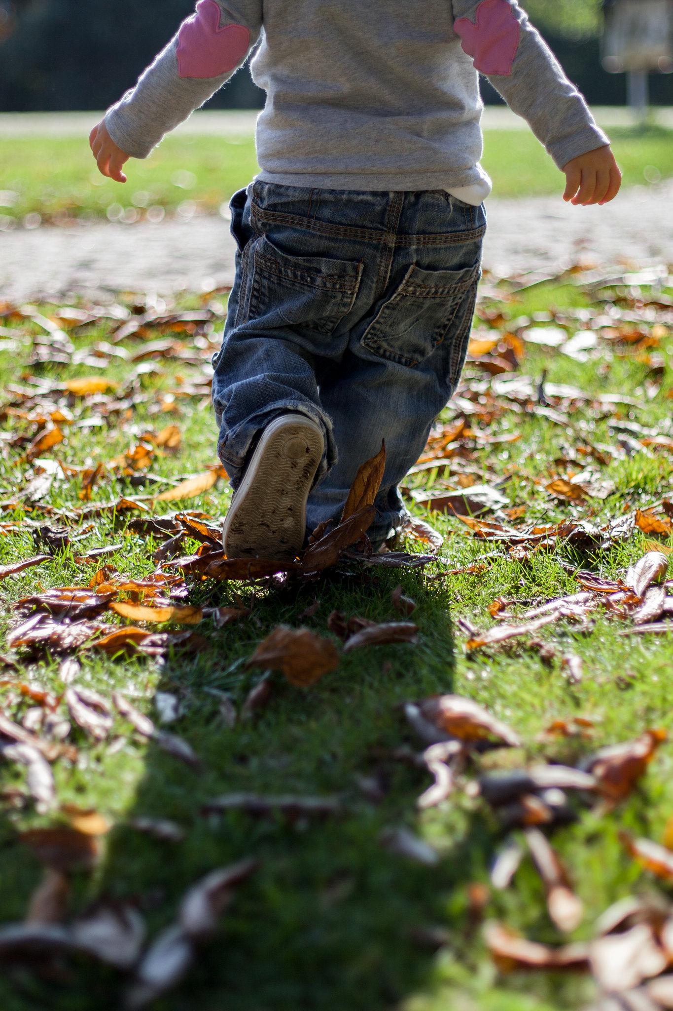 Leafy run.