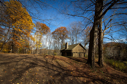 autumn trees shadow ny newyork fall dan nature leaves forest landscape outside cabin day hiking hill scenic sunny foliage nys rochesterny westernnewyork wny monroecounty ellisonpark dangler fortschuyler dandangler