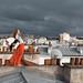 Poppyontherooftop by Dwam