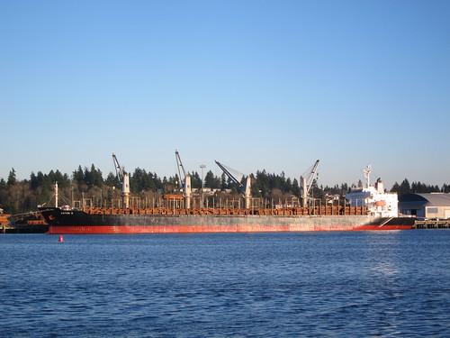 Aster K — Bulk Log Carrier