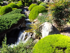 Cowra Japanese Garden and rocks and waterfall.