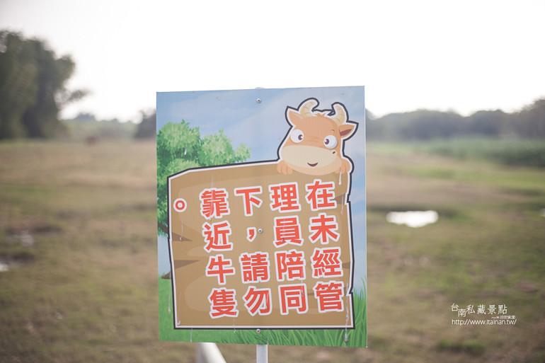 台南私藏景點--德元埤&老牛的家 (28)