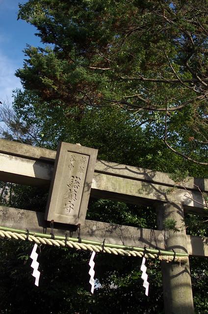 東京路地裏散歩 谷中フォトウォーク 2013年12月30日