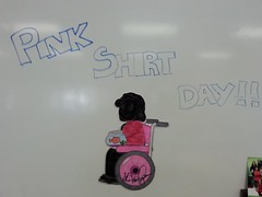 Pink Shirt Day (submitted by Our Lady of the Assumption School) by melodyaroundtheworld