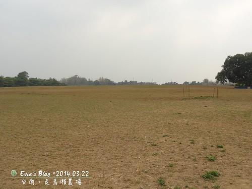 DSC01698