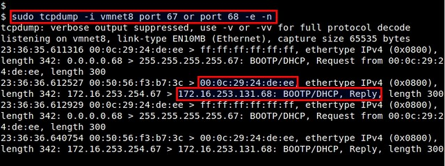How to monitor DHCP traffic from the command line on Linux