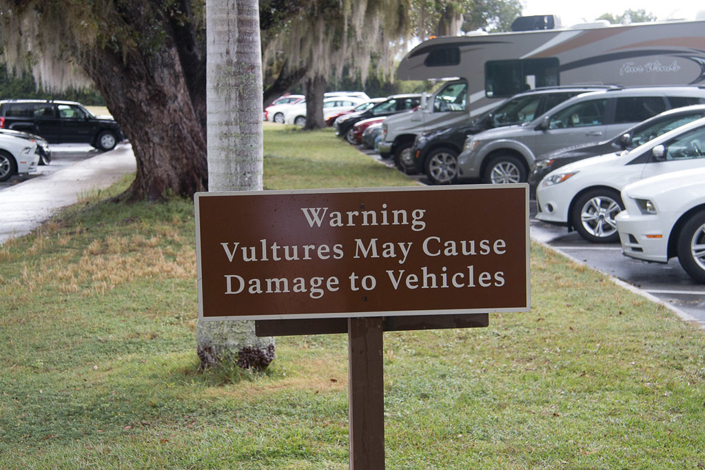 Sign at Everglades National Park - Vultures May Cause Damage to Vehicles